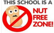 Capture nut free school(2)